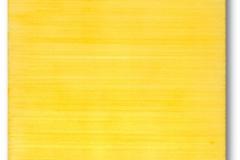 302_p20gi_giallo_g_1